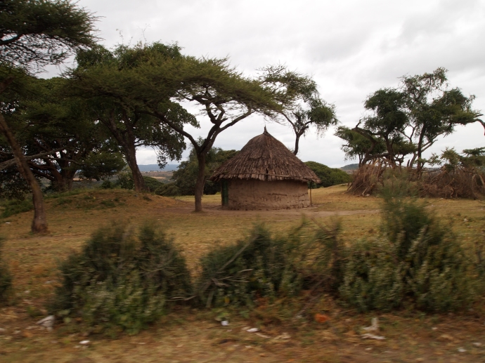 residences near Lake Langano
